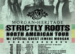 Strictly-Roots-SUMMER-Tour-Date-Poster-2-1-663x1024