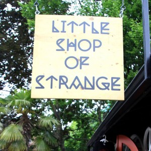 littleshopofstrange